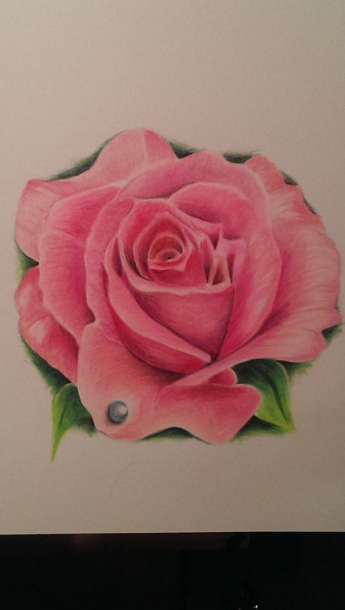 25 Best Ideas About Realistic Rose Tattoo On Pinterest Ideas And Designs