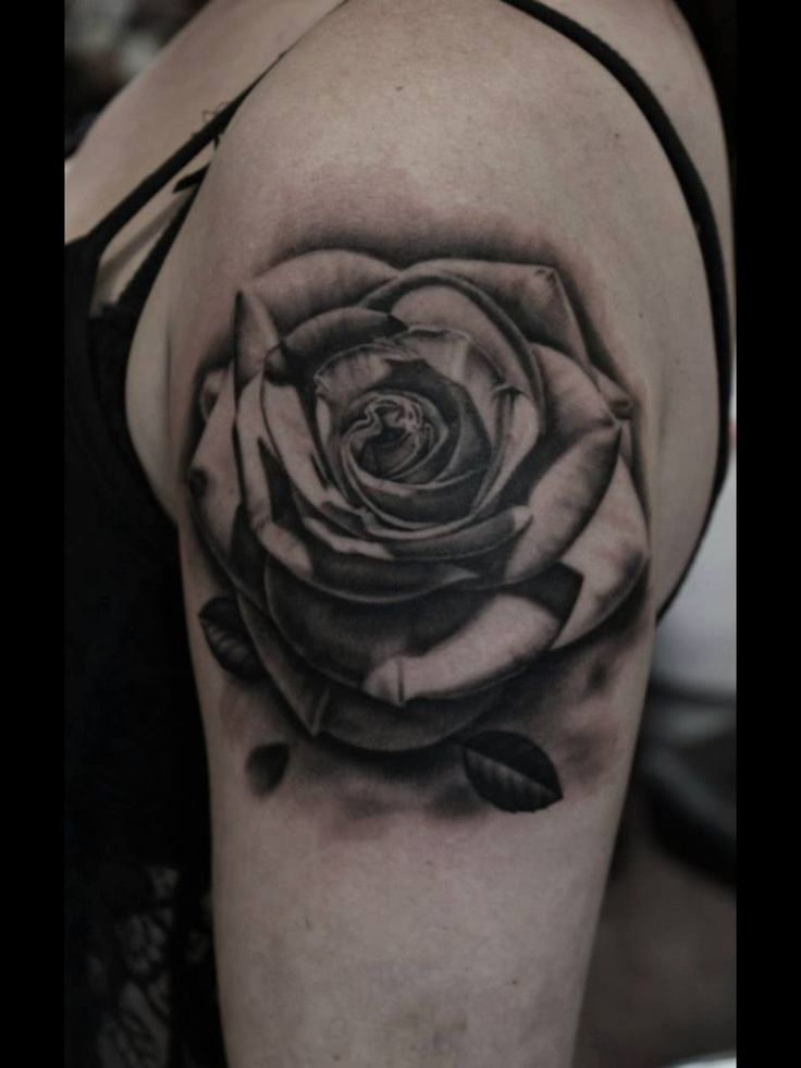 30 Black Rose Tattoo Designs Images And Picture Ideas Ideas And Designs