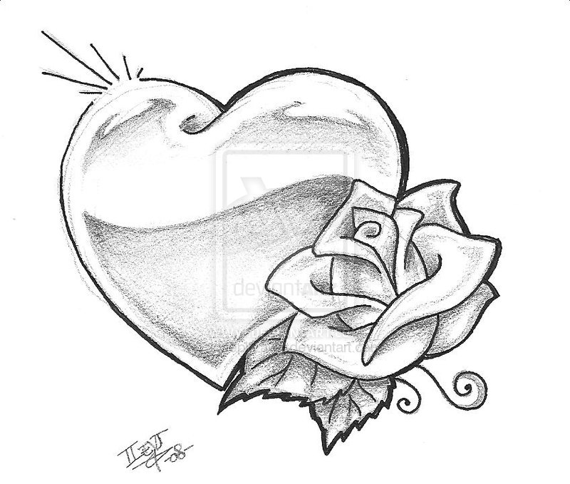 10 White Rose Tattoo Samples And Design Ideas Ideas And Designs