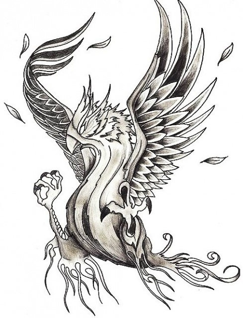 Эскизы птицы феникс 5 фото татуировки Татушка