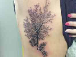 Tree tattoos designs ideas men women best awesome cool