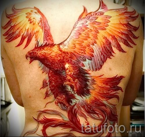 тату феникс на спине фото готовой татуировки от 11022016
