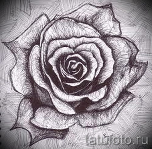эскизы тату цветов черно белые рисунки от 26042016 3