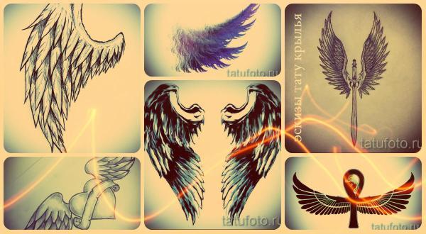 Эскизы тату крылья: интересные рисунки для татуировки с крылом