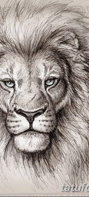 Значение тату 171голова льва187 смысл фото рисунков эскизы