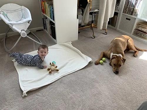 Annie 4 Month Update