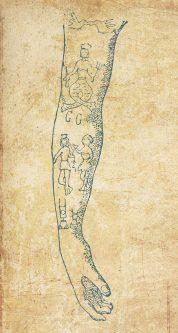 Teckning av arm med gamla blåtatueringar, på bakgrund av papyrusliknande papper.