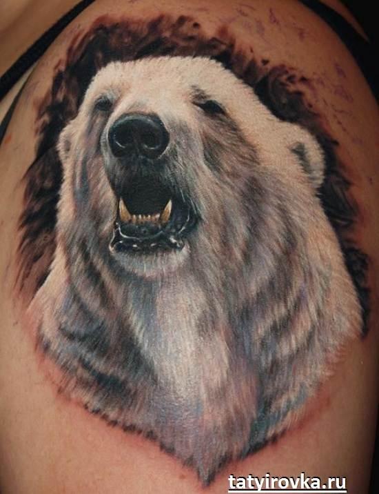 Тату-медведь-и-их-значение-4