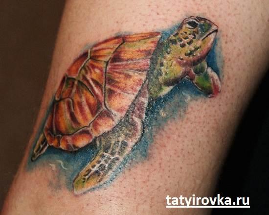 Тату-черепаха-и-их-значение-11
