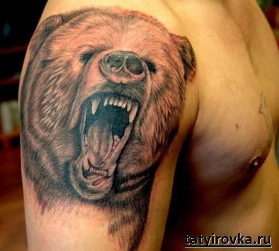 Тату-медведь-и-их-значение-6