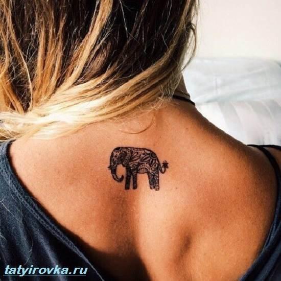 Тату-слон-и-их-значение-5