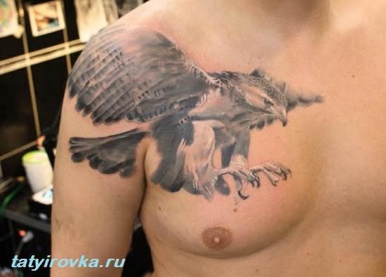 Тату-орел-и-их-значение-10