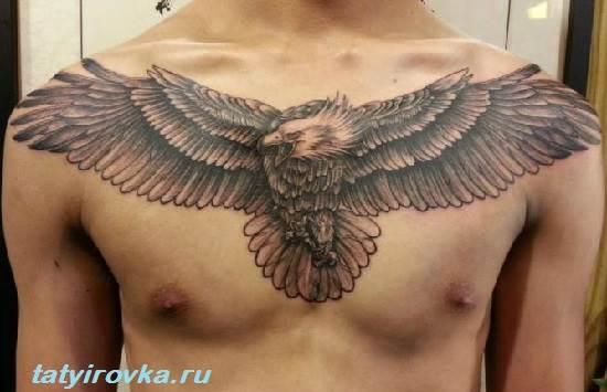 Тату-орел-и-их-значение-7
