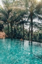 Denpasar Barat, Denpasar Bali Indonesia - Aqua, Arecales, Body of water, Fluid, Nature, Outdoor structure, Swimming pool, Teal, Tree, Turquoise, Vegetation, Water, Woody plant