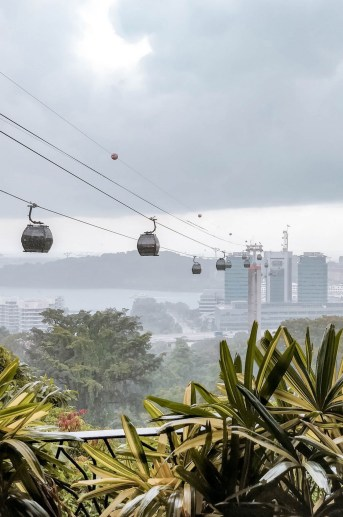 Singapore Cable Car, Gardens by the Bay Central Singapore - Cable car, Transport