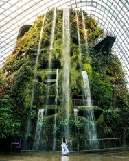 Gardens by the Bay, Singapore Central Singapore - Botanical garden, Person, Water feature, Waterfall