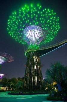 Supertree Grove, Gardens by the Bay Central Singapore - Electrified, Light fixture