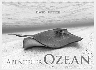David Hettich Kalender 2017