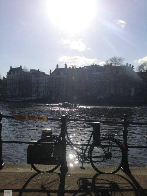 Bicycles belong to Amsterdam