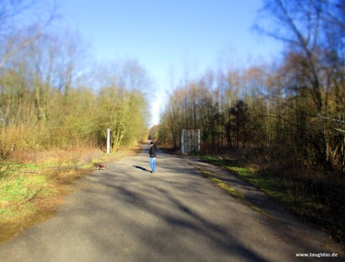 Schwarze Heide Hünxe