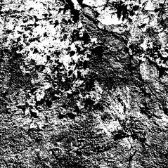 grout-decay_BW