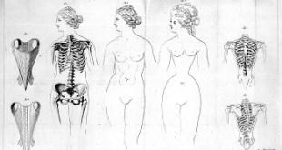 korzety a kosti v minulosti
