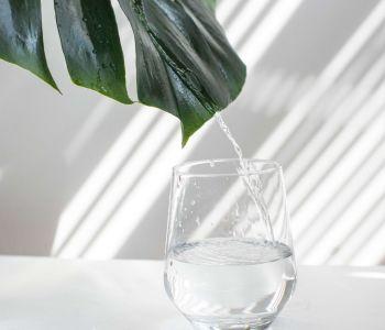 5 tips om met natuurlijke middelen schoon te maken