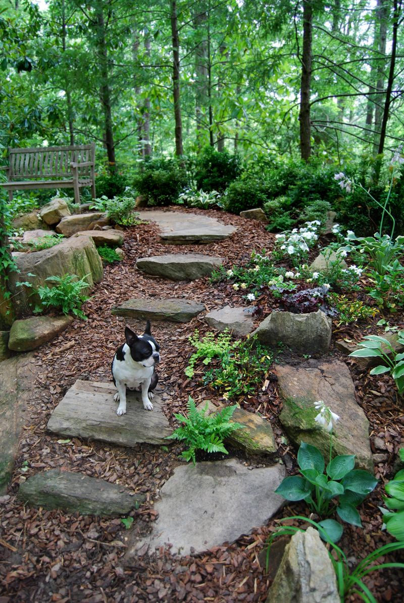 23 Landscape Ideas For A Wooded Backyard Decoratop in 11 Awesome Ideas How to Makeover Wooded Backyard Ideas