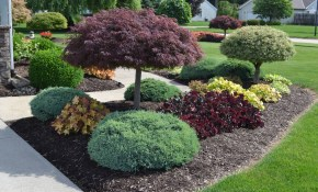 23 Landscaping Ideas With Photos Mikes Backyard Nursery pertaining to Backyard Tree Landscaping Ideas