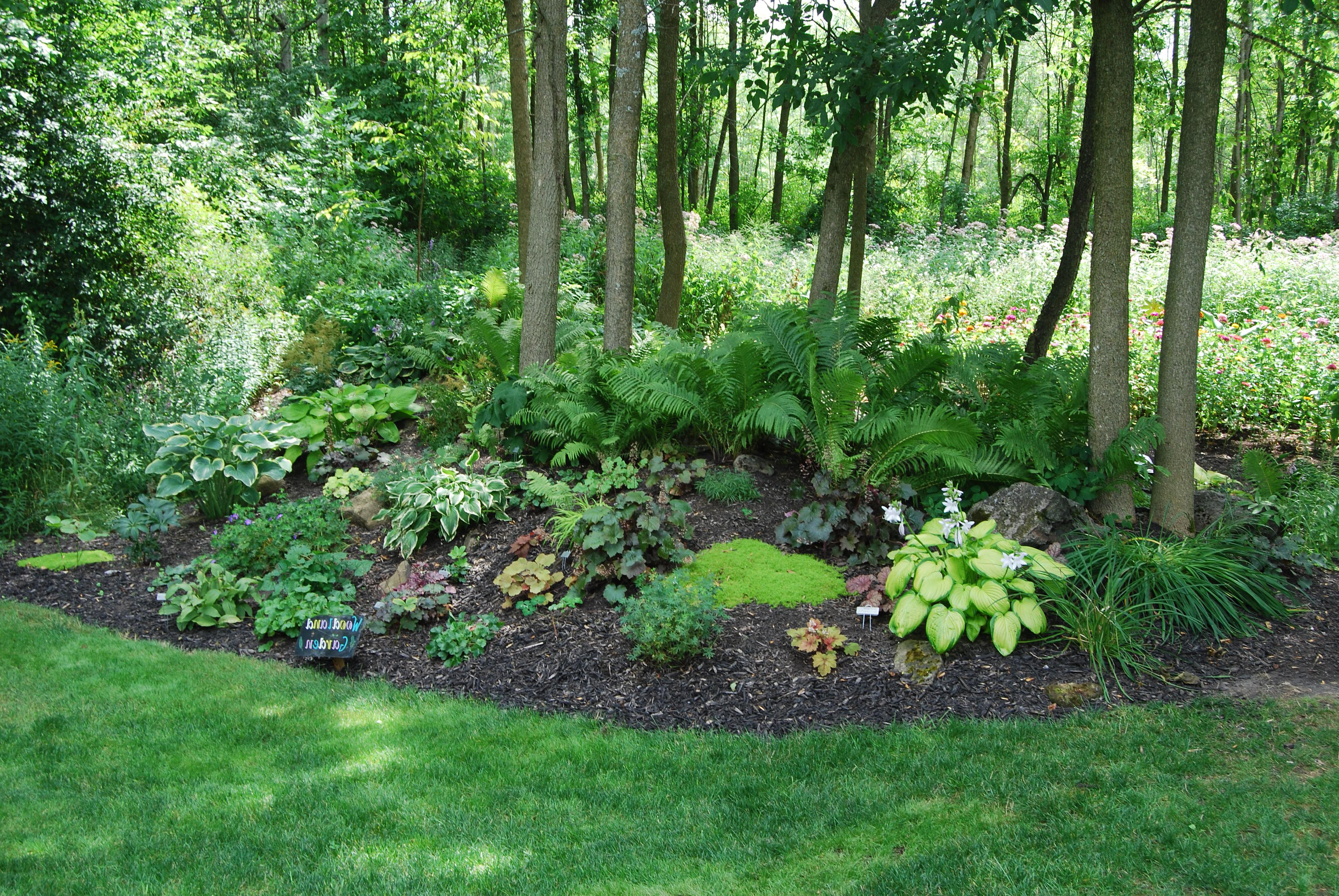 11 Awesome Ideas How to Makeover Wooded Backyard Ideas ... on Wooded Backyard Ideas id=81706