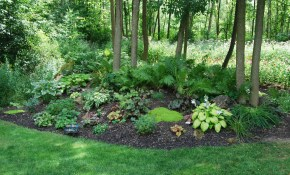 54 Large Landscaping Ideas For Wooded Areas Hardscaping Trends for Wooded Backyard Ideas