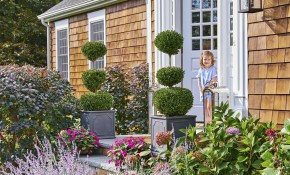 65 Best Front Yard And Backyard Landscaping Ideas Landscaping Designs within 14 Some of the Coolest Ideas How to Upgrade Ideas For Backyard Gardens
