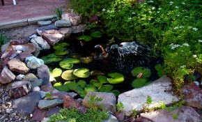 Alt Build Blog Small Backyard Pond Tierra Este 70130 regarding Backyard Pond Ideas Small