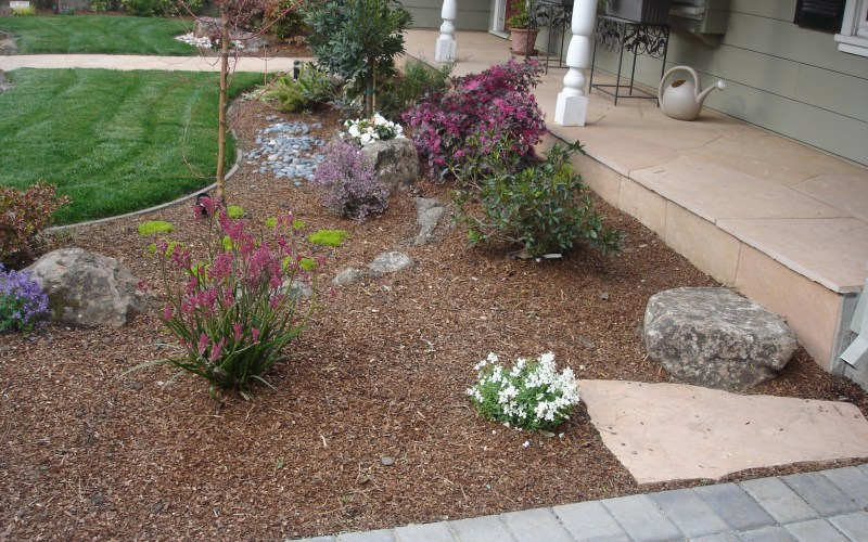 Backyard Ground Cover Ideas Download Landscaping Landscape Channel throughout 14 Some of the Coolest Ideas How to Makeover Backyard Ground Cover Ideas