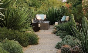 Desert Backyard Design Landscaping Google Search Home Pinterest in 14 Some of the Coolest Designs of How to Upgrade Desert Backyard Landscaping