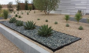 Desert Courtyard Landscaping Ideas With Desert Landscaping Design pertaining to 14 Genius Concepts of How to Make Desert Backyard Landscaping Ideas