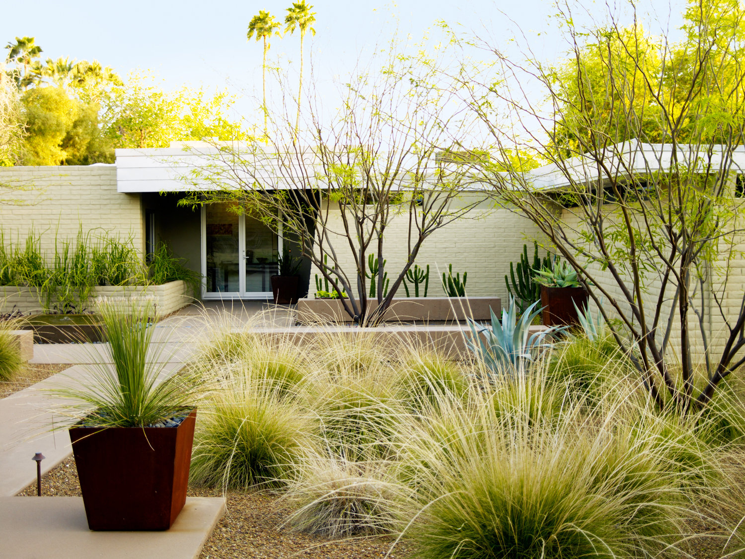 Desert Landscaping Ideas From A Phoenix Front Yard Sunset Magazine with 11 Some of the Coolest Tricks of How to Upgrade Desert Backyard Ideas