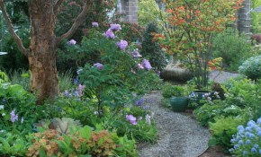 Diy Garden Paths And Backyard Walkway Ideas The Garden Glove inside Backyard Pathway Ideas