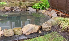 How To Build A Garden Pond Diy Project Youtube pertaining to 13 Clever Initiatives of How to Make Easy Backyard Pond Ideas