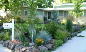 Landscaping Ideas For Front Yard Colorado Xeriscape On Pinterest with regard to 15 Genius Tricks of How to Make Backyard Xeriscape Ideas