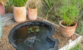 Pretty And Small Backyard Fish Pond Ideas At Decor Landscape Garden regarding 15 Awesome Ways How to Upgrade Backyard Fish Pond Ideas