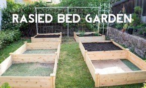 Raised Bed Gardening How To Start A Garden With Raised Beds Youtube in Backyard Raised Garden Ideas