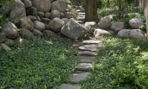 Simple Backyard Ground Cover 43 Best Idea Image On Pinterest Garden throughout 14 Some of the Coolest Ideas How to Makeover Backyard Ground Cover Ideas