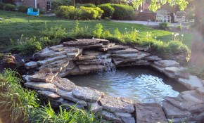 Small Backyard Ponds Completed Pond Tierra Este 36240 inside Small Backyard Pond Ideas