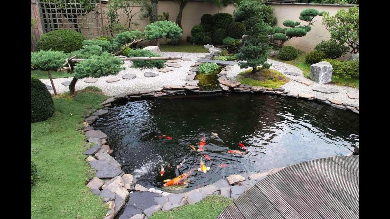 Small Koi Fish In Garden For Ponds Design Ideas Youtube in Small Backyard Pond Ideas