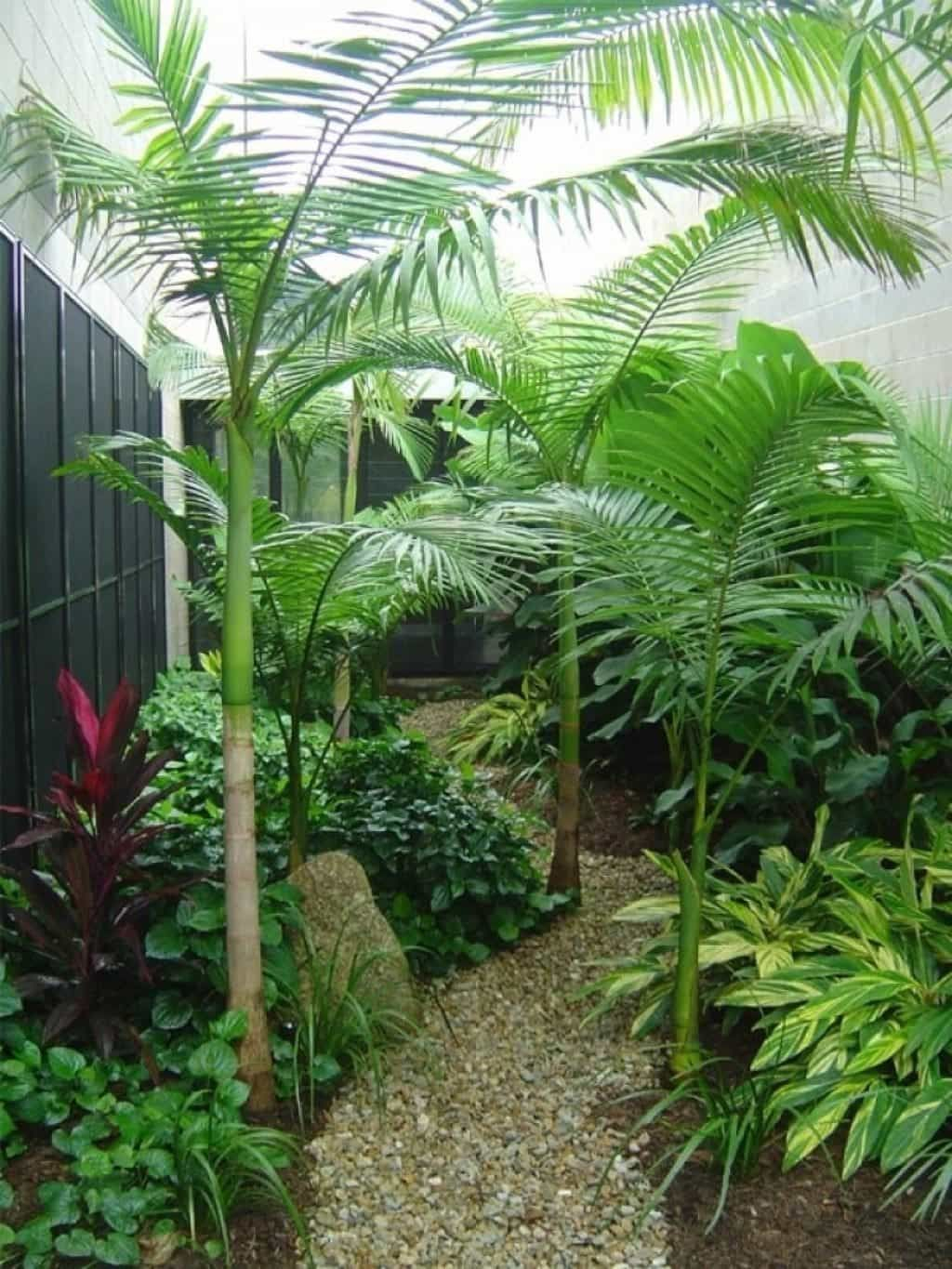 Small Tropical Landscaping Ideas Small House Tropical Backyard inside Small Tropical Backyard Ideas