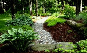 Start Shade Garden Ideas Outdoor Ideas Inspiration To Get Shade with Shady Backyard Landscaping Ideas