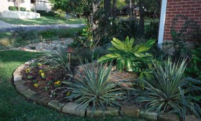 Texas Landscaping Ideas Fort Worth Tx Low Water Landscaping throughout Backyard Ideas Texas