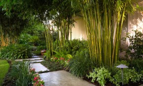 15 Stunning Tropical Landscape Designs That Know How To Relax You in Tropical Backyard Design Ideas