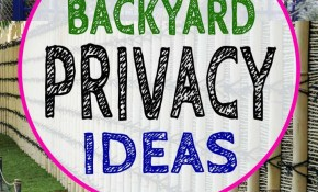 20 Backyard Privacy Ideas For Screening Neighbours Out Gardening intended for Backyard Privacy Ideas